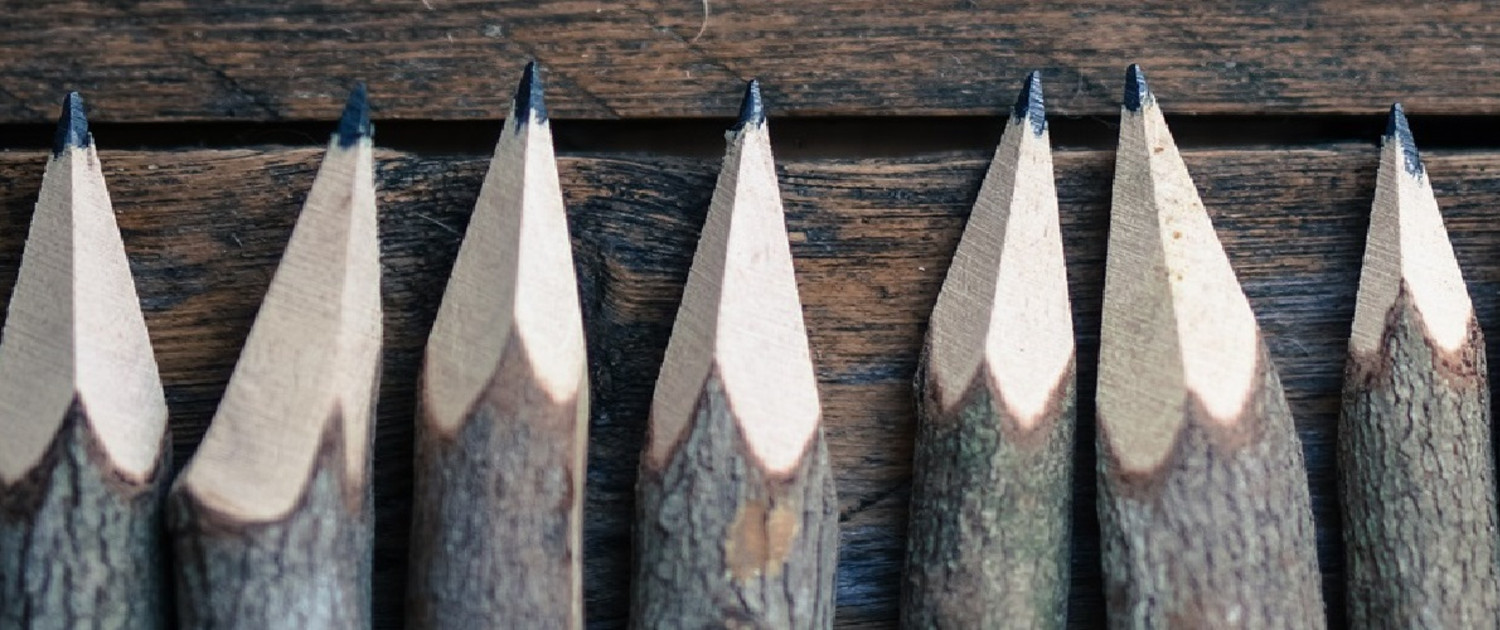 Set of pencils stylized tree branch on wooden background